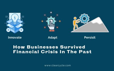 Innovate, Adapt, Persist: How Businesses Survived Financial Crisis in The Past